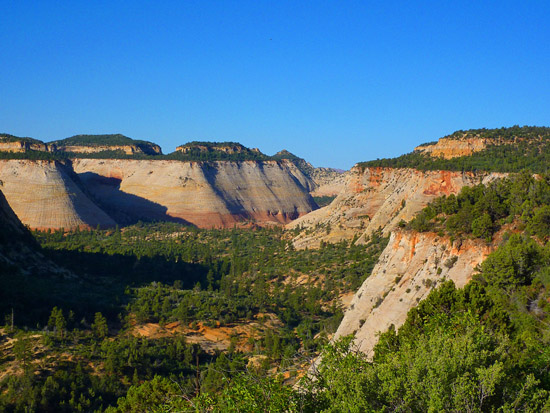 The White Cliffs on the East Rim Trail